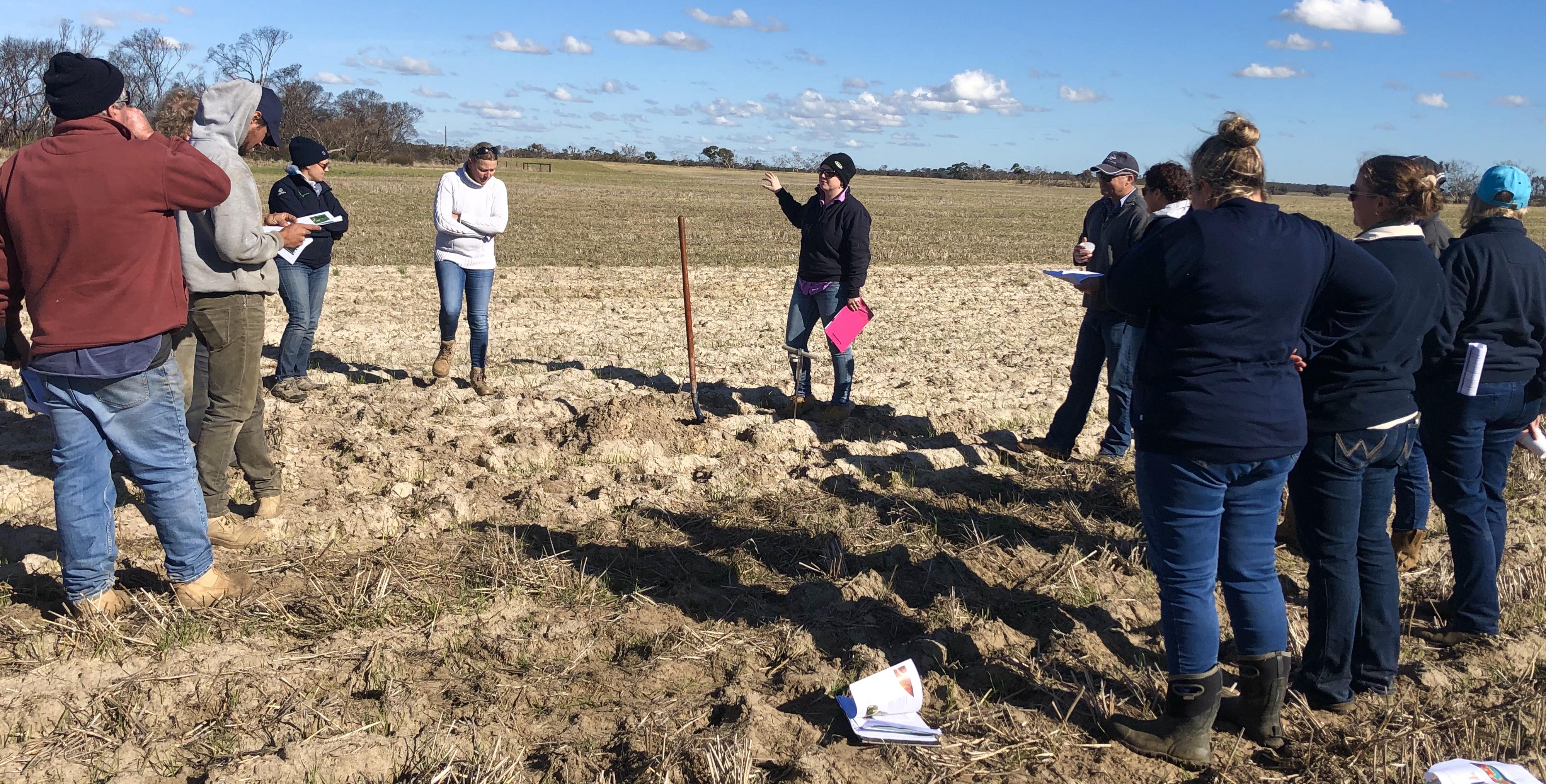 GRDC Sandy Soils Project Site Sherwood 26th June 2019 2