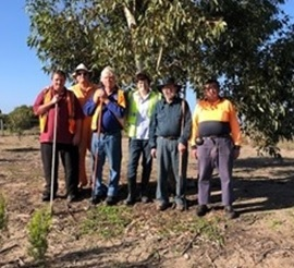 Coorong Declared Plant Group