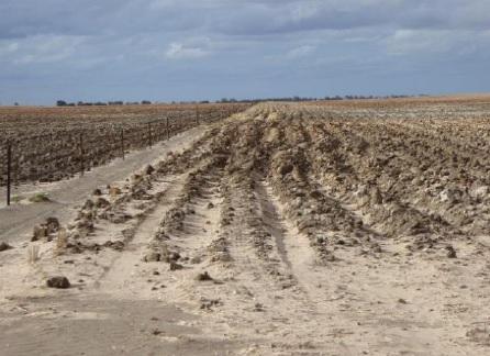 lameroo delved sub soil
