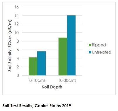 Soil Test Results Cooke Plains 2019