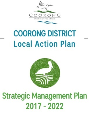 CDLAP Strategic Plan Front Page 2017-2022