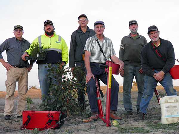 1. Farm Forestry Landcare Network Planting Team Meningie 2016